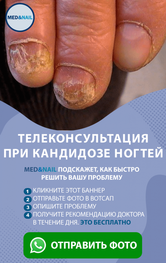 ГРИБ ВЕРТИК2.png